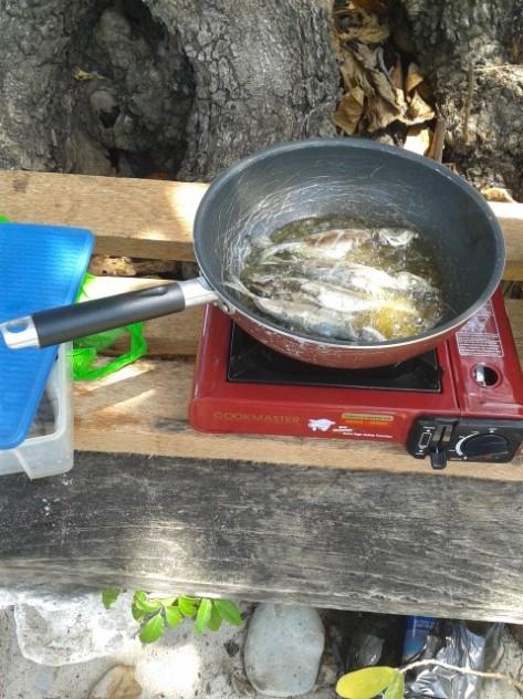 Ikan segar sebagai salah satu menu makan siang ini