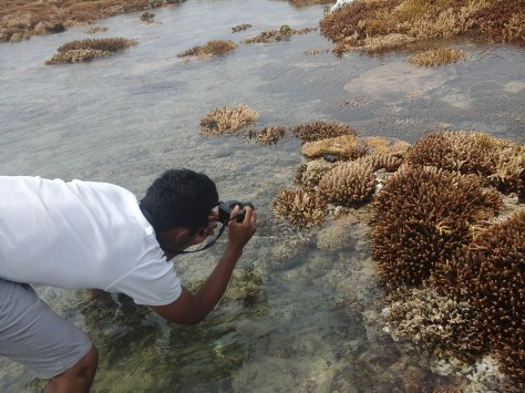 Ramadhan sedang mengambil gambar terumbu karang