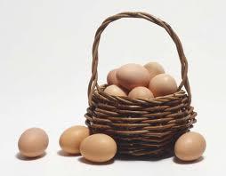 Jangan Letakkan Telur Dalam Satu Keranjang